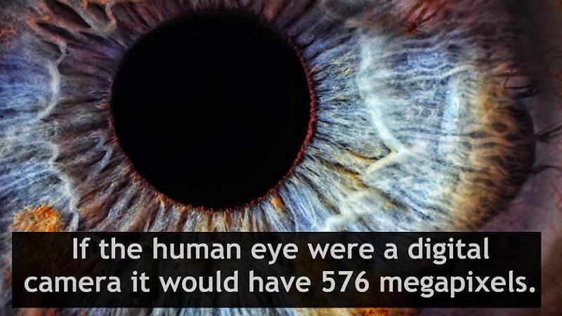 چشم انسان چند مگاپیکسل است